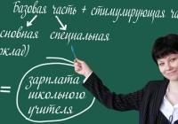 Ольга Васильева: схемы отчетности о повышение зарплат преподавателям вузов будут ужесточаться