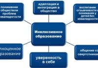 Инклюзивное образование в России: вопросы и ответы