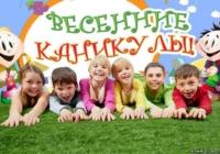 Начало весенних каникул в школах Воронежа перенесли на несколько дней