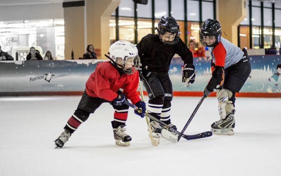 Бесплатная хоккейная школа в Воронеже