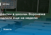 Карантин по гриппу и ОРВИ в школах Воронежа закончится 20 февраля