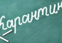 Школы Воронежа закрывают на карантин с 7 февраля 2019 года