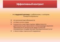 Совет Федерации. Программа «Эффективный контракт» требует доработки