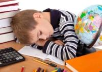 Эксперты озвучили реальную учебную нагрузку на российских школьников
