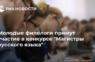 Для магистрантов и аспирантов российских вузов объявлен конкурс «Магистры русского языка»