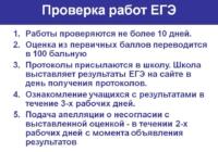 Результаты некоторых работ на ЕГЭ-2019 могут быть аннулированы