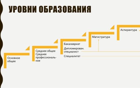 деление на бакалавриат и магистратуру