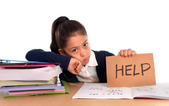 домашние задания для школьников