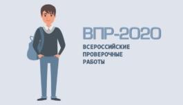 Рособрнадзор направил в регионы методические указания по проведению ВПР-2020