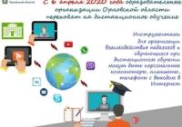 Традиционную систему образования в школах не заменят на дистанционную